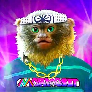 Profile picture for marmoset music