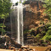 Toccoa Falls College