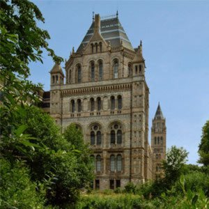 Profile picture for Natural History Museum