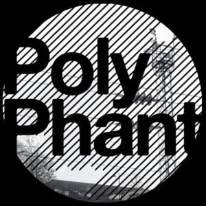 Profile picture for Polyphant