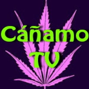 Profile picture for Cáñamo TV
