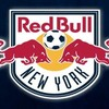 Red Bulls Reader