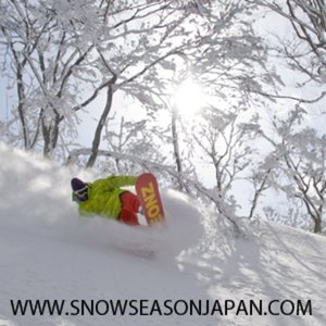 Profile picture for Snow Season Japan