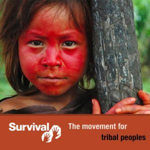 Profile picture for Survival International