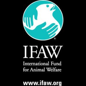 Profile picture for IFAW - Int. Fund for Animal Welf
