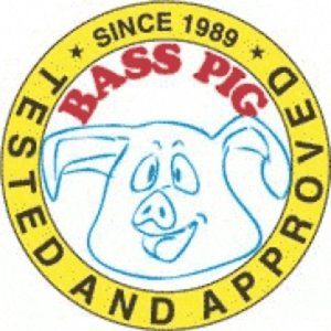 Profile picture for Bass Pig