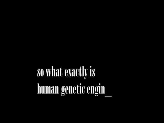 genetic engineering in humans essay