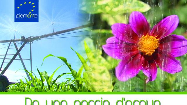 Da una goccia d'acqua - Documentario Agricoltura PSR 2007-2013