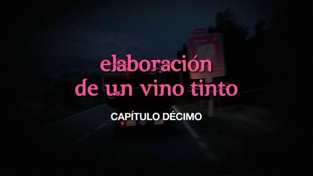 Cap. 10 Elaboración de un vino tinto