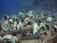 Shark & Yolanda reef (Egitto)