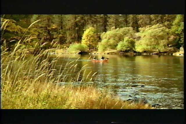 Blue Cross Blue Shield River On Vimeo