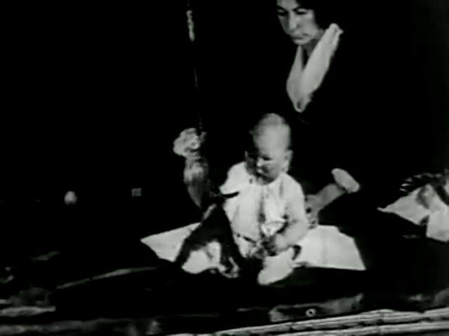 Watson - Little Albert Experiment