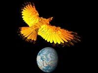 The Phoenix - The Hidden Words