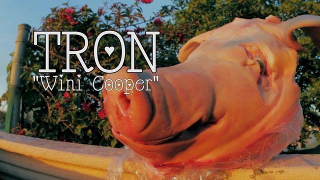 Tron - Wini Cooper
