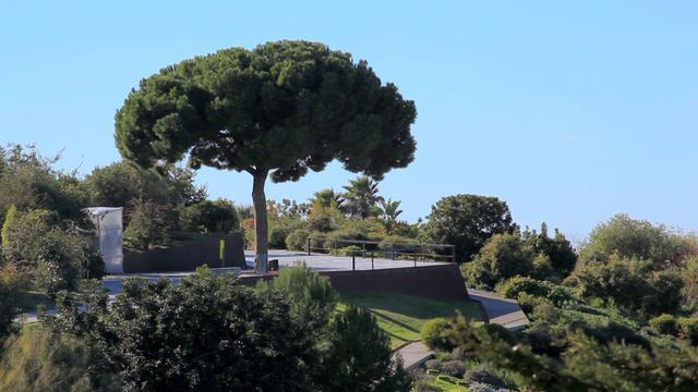 Botanical Gardens of Barcelona, Spain