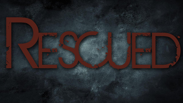 Rescued the Movie - Orphans