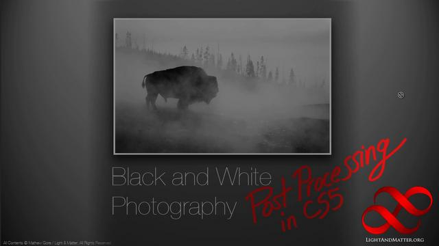 Light & Matter's Guide to Black and White Photography