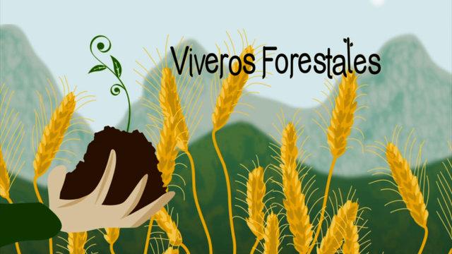 Viveros forestales 3 y ltima entrega de monte for Proyecto productivo de vivero forestal