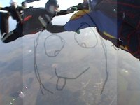skydive 2010