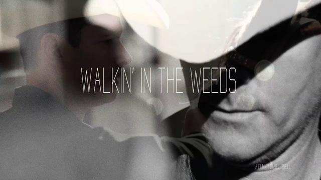 WALKIN' IN THE WEEDS