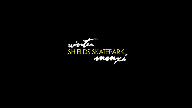 Shields SkatePark - Winter 2011 - New Jersey