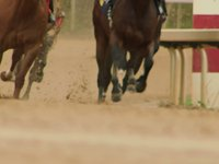 Oaklawn | Arkansas Derby 2011