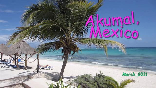 how to get to akumal mexico