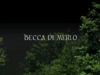 1st Wingsuit Base - Grand Paradis - Becca di Merlo - Vampire 3