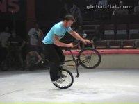 Global-Flat.com - Flatring 2006
