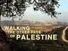 The other face of Palestine