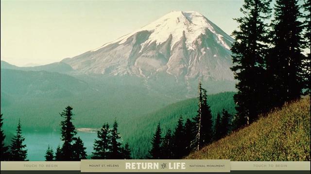 Mount St. Helens: Return to Life