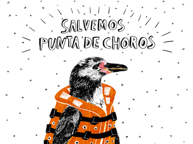 Save Punta de Choros / Case English
