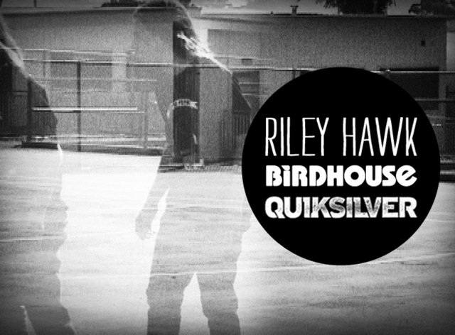 Riley Hawk