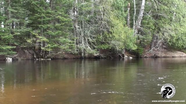 Wisconsin fly fishing brown trout early season on vimeo for Wi fishing season