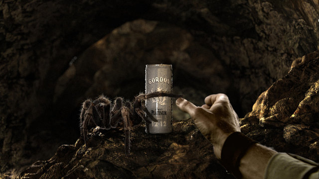 "Gordon ""Spider"" Commercial"