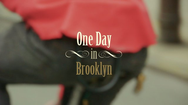[TRVR] One Day in Brooklyn