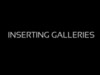 How to add Galleries in WordPress