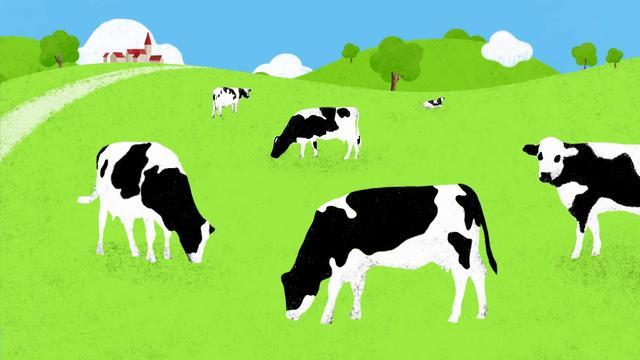 comment est fabriqu le lait en poudre r gilait on vimeo. Black Bedroom Furniture Sets. Home Design Ideas