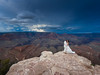 Manuel and Samirah's Wedding at the Grand Canyon