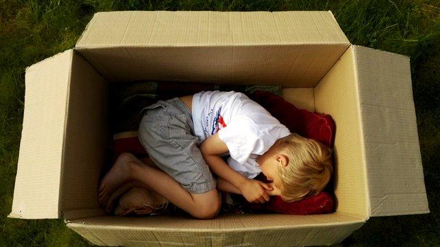 Короткометражка The Adventures of a Cardboard Box онлайн