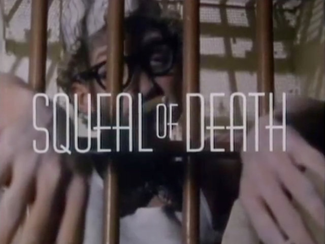 NYU Student Film: Squeal of Death