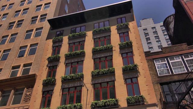 Carriage House - Chelsea, Manhattan Development