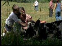 Farm Sanctuary: Rescue, Education and Advocacy for Farm Animals
