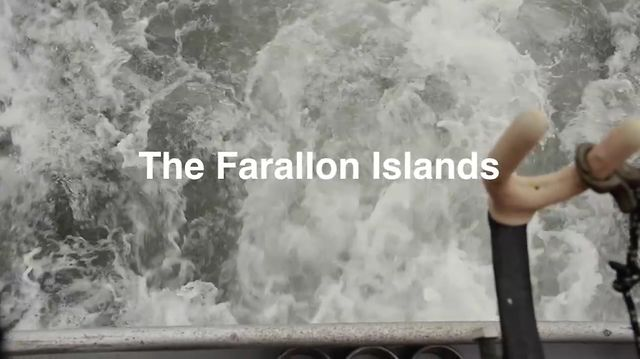 The Farallon Islands