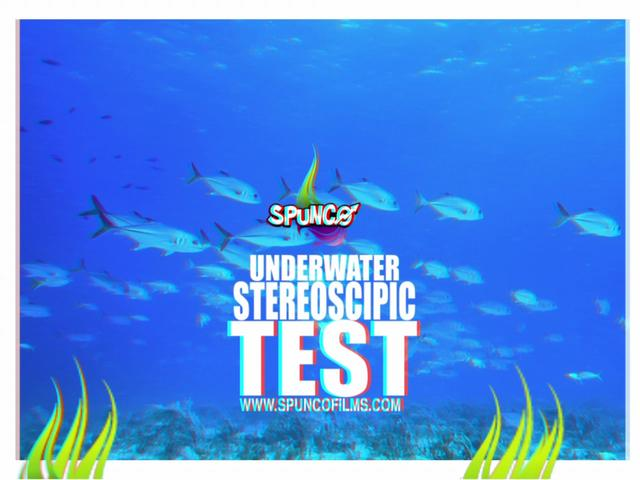 3d stereoscopic scuba diving