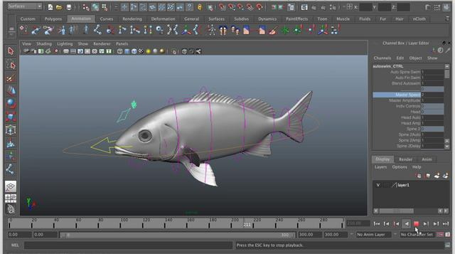 Maya/Rigging: Creating an auto-swim fish rig using expressions, Part 1