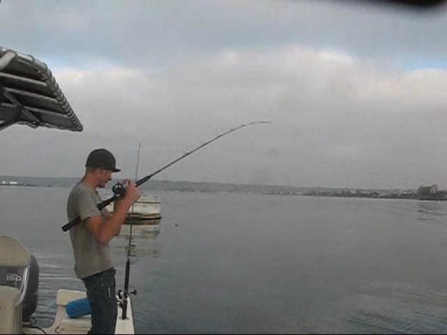 Fishing san diego bay on vimeo for Fishing in san diego