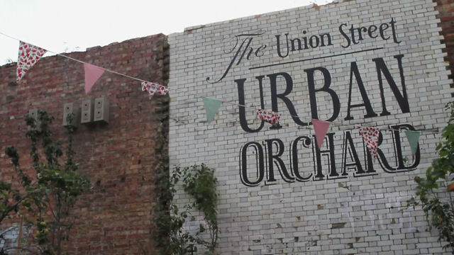 The Union Street Urban Orchard