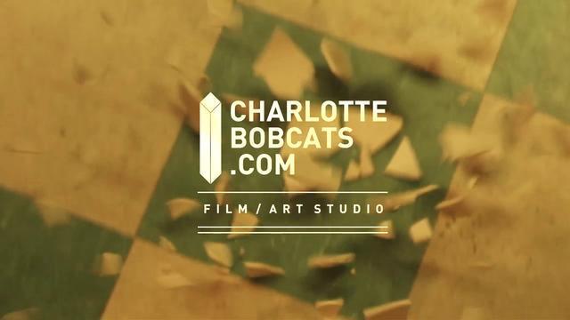 CHARLOTTEBOBCATS.COM REEL 2011