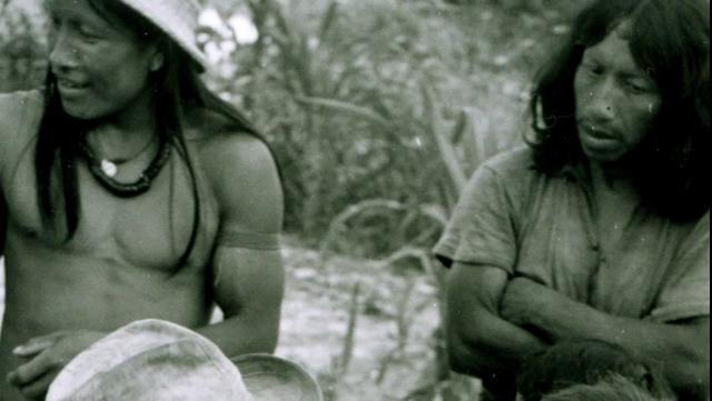 Olhares Cruzados -  Parque Indígena do Xingu 50 anos (xingu reserve 50 years)